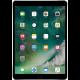 iPad Pro 10.5 (A1701/A1709)